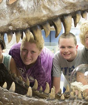 Tyranosaurus skull at Camp Explore
