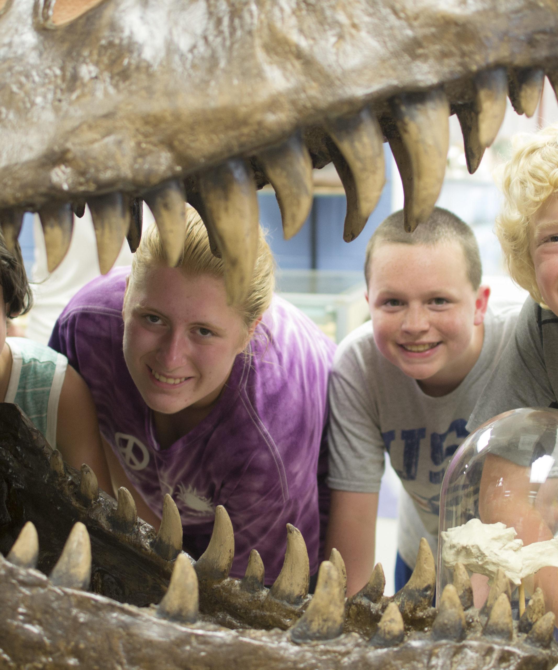 Camp Explore - T-Rex skull